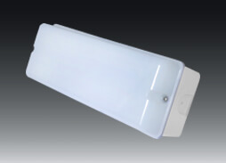 Bulkhead_wall_light_BHAC3502L