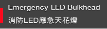 Emergency LED bulbkhead