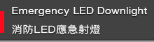 Emergency LED downlight